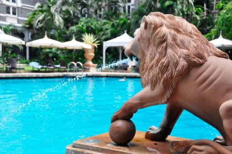 how I loved the projectile vomiting lions at the pool