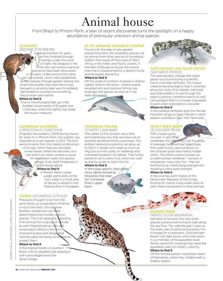 CNTFeb14 Animal House Laurel Munshower
